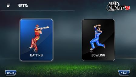 Alternative to Don Bradman Cricket 17 Game